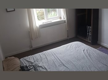 Housemate wanted- Trendy East London
