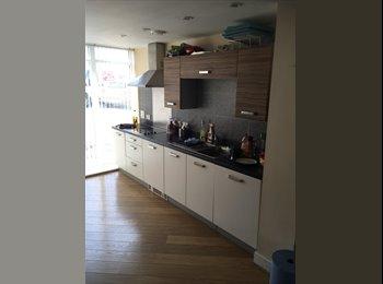 EasyRoommate UK - Single bedroom £340 included all bills! - Basingstoke, Basingstoke and Deane - £340 pcm
