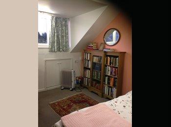 EasyRoommate UK - edwardian house in worcester - Worcester, Worcester - £320 pcm