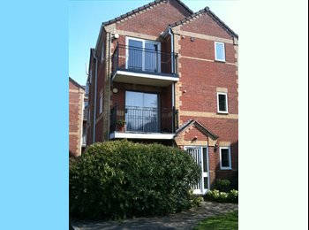 EasyRoommate UK - Double room in centrally located apartment - Peterborough, Peterborough - £425 pcm