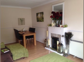 Gorgeous and spacious double room to rent