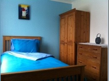 EasyRoommate UK - Lovely room in Saffron Walden - Audley End, Saffron Walden - £350 pcm