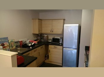 EasyRoommate UK - Double room close to city centre - Higher Broughton, Salford - £575 pcm
