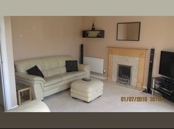 Furnished Double Room - Professional Female Wanted for...