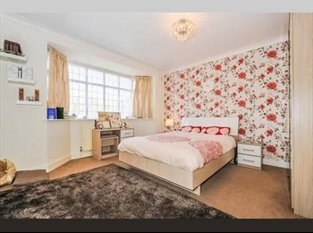 Large double room in warm family home great location -...