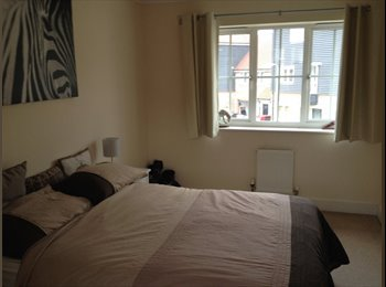 EasyRoommate UK - Spacious double room to rent in pleasant family home  - Chineham, Basingstoke and Deane - £450 pcm