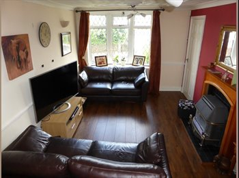 EasyRoommate UK - Single Room with lovely woodland views - Stafford, Stafford - £300 pcm