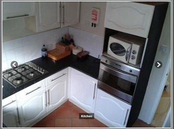 EasyRoommate UK - Double room 5 mins walk from station - Chelmsford, Chelmsford - £400 pcm