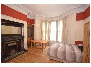 En suite double room available NOW