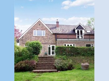 EasyRoommate UK - Exceptionally large room to rent in stunning house in North Chailey. - Lewes, Lewes - £700 pcm