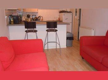 EasyRoommate UK - MODERN NG7 ALL FEMALE SHARED 3 BED FLAT (NO DEPOSIT) - Nottingham, Nottingham - £325 pcm