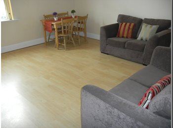 EasyRoommate UK - ONE LARGE BEDROOMED FURNISHED - Crookes, Sheffield - £550 pcm