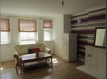 Well located 1 bedroom flat could be used as 2 bedroom...