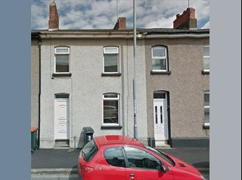 EasyRoommate UK - 2 double rooms available in Newport - Newport, Newport - £233 pcm
