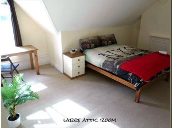 EasyRoommate UK - Warm and Friendly Professional House Share - 10 Min From City Centre - Edgbaston, Birmingham - £325 pcm