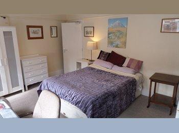 Bedsit at Clapham Park