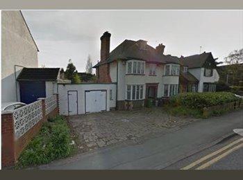 EasyRoommate UK - Various Rooms in attractive house - Bradmore, Wolverhampton - £395 pcm