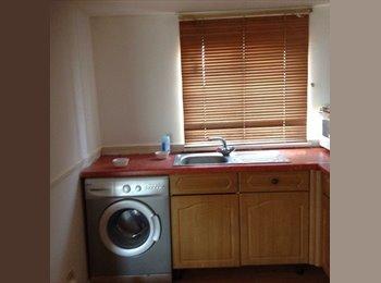 EasyRoommate UK - Open plan one bedroom loft 2nd floor - Newbury Park, London - £780 pcm