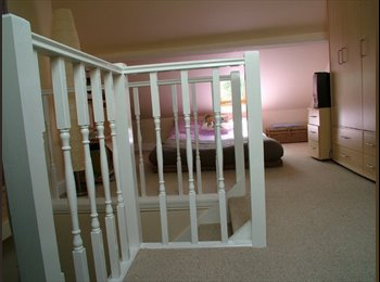 EasyRoommate UK - SIMPLE  ROOM WITH AMAZING FLAT MATES - Braunstone, Leicester - £240 pcm