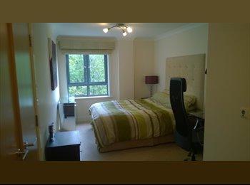 EasyRoommate UK - Beautiful, modern master en suite room in Jericho - Oxford, Oxford - £672 pcm
