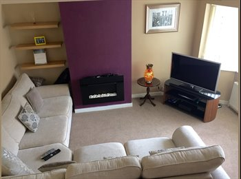 Large, bright, double, newly furnished room to rent in...