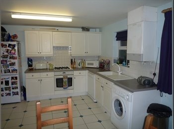 Large Double Room in Fantastic Student House