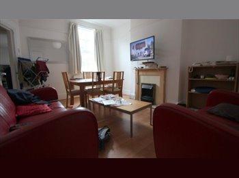 EasyRoommate UK - Spacious house near Headingley Stadium - Burley, Leeds - £355 pcm