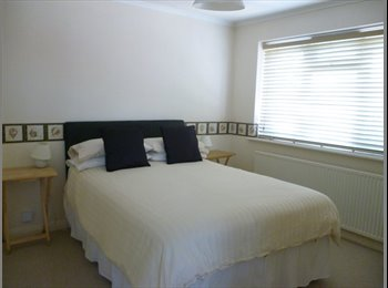 EasyRoommate UK - Big double room to let Monday to Friday only Contractors only, No Deposit. - Basildon, Basildon - £425 pcm