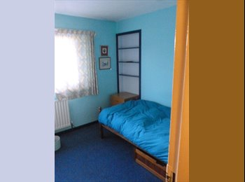 Monday to Friday let, single room in clean , quiet flat