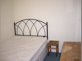 Great double room in sociable houseshare