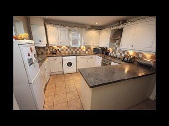 EasyRoommate UK - Rooms to rent within well presented house.  - Newton Abbot, Newton Abbot - £500 pcm