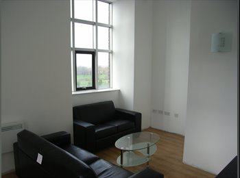 EasyRoommate UK - Beautiful 2 bedroom Flat in Victoria Mill - Reddish, Stockport - £600 pcm