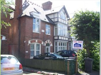 EasyRoommate UK - 3rd professional person to share large, lovely, clean ground floor flat in safe, leafy north London - Whetstone, London - £550 pcm