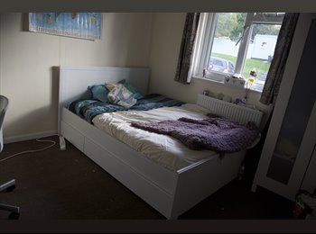 EasyRoommate UK - Double Room Available Now!  - Falmouth, Falmouth - £355 pcm