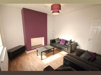 Beautiful Renovated house, looking for a friendly clean...