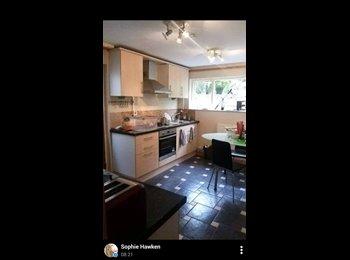 EasyRoommate UK - House Share - Port Tennant Swansea - Swansea, Swansea - £290 pcm