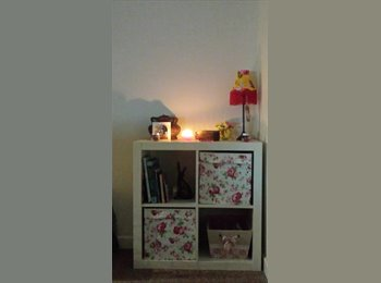 EasyRoommate UK - I have a room for rent out - Roath, Cardiff - £350 pcm