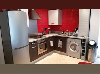EasyRoommate UK - Double room next to station - Chelmsford, Chelmsford - £390 pcm