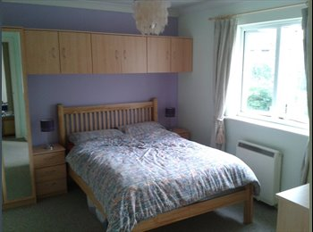 EasyRoommate UK - Lovely double room (en-suite) 3 mins from Colchester north/main station - Colchester, Colchester - £425 pcm