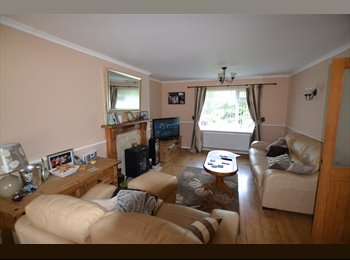 King size double room in Seaham