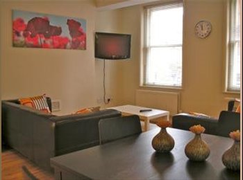 The delight apartment in Central London