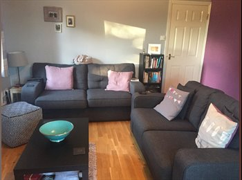 Double room to rent, walkable distance to city centre