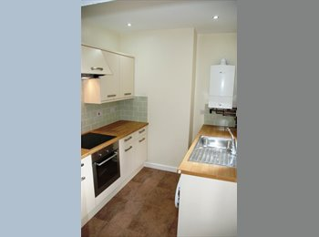 EasyRoommate UK - Room to rent in three bed house  - Hunters Bar, Sheffield - £320 pcm