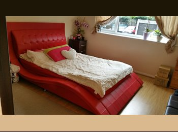 EasyRoommate UK - Lovely Double  Room  for rent - Talbot Woods, Bournemouth - £450 pcm