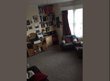 EasyRoommate UK - 500 pcm single room in seven sister - Tottenham, London - £500 pcm