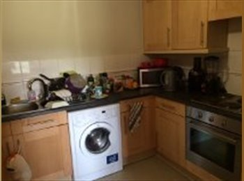 EasyRoommate UK - Riverview apartment central maidstoner - Maidstone, Maidstone - £400 pcm