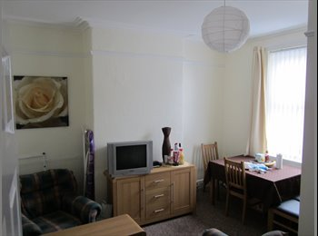 EasyRoommate UK - Nice Large Double Room Chinese Shared House - Crookes, Sheffield - £65 pcm