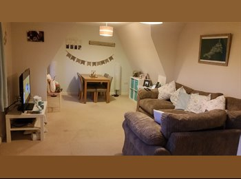 EasyRoommate UK - light and airy double room available - Blunsdon, North Wiltshire - £400 pcm