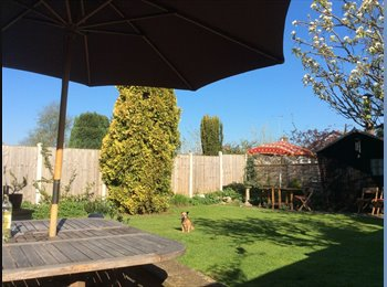 Large room in detached house in lovely village