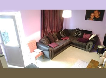 EasyRoommate UK -  Smart Double Room to let in the heart of Somerset - Somerton, South Somerset - £400 pcm
